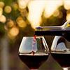 Quand la passion du vin rencontre la technologie !
