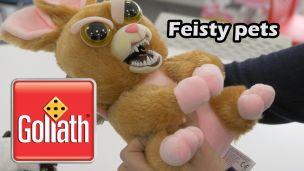 On a joué aux Feisty Pets