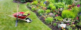 Elaguer, couper et tailler ... c'est le bon moment pour intervenir au jardin