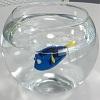Robo Fish Le Monde de Dory