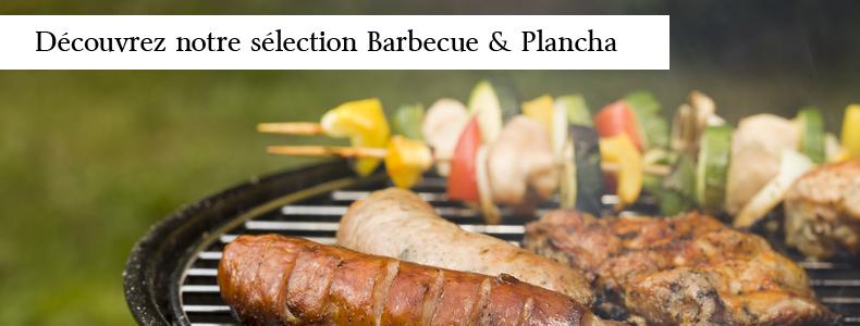 Top produits Barbecue et Plancha 2013